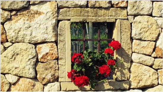 finestra della collina.. - Mossano (1653 clic)