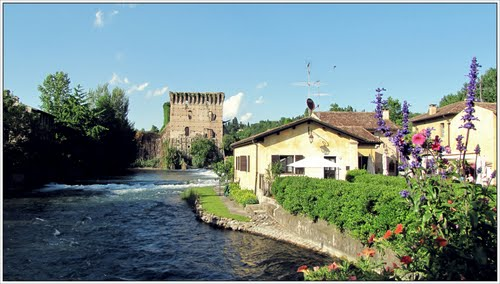 carezze... home and dry  ( pet shop boys)  - Borghetto (949 clic)