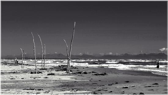 mare  di Luglio... - Rosolina mare (1002 clic)