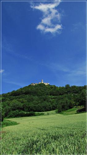 giugno in val liona - Grancona (1036 clic)