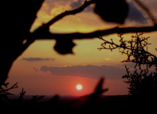Cercando il sole - Perdasdefogu (2376 clic)