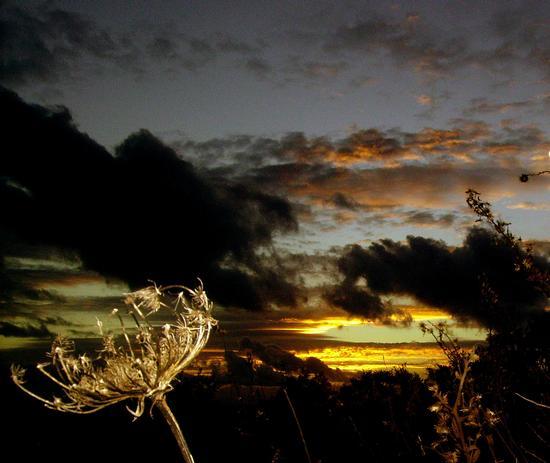 Nuvole d'inverno - Perdasdefogu (2916 clic)