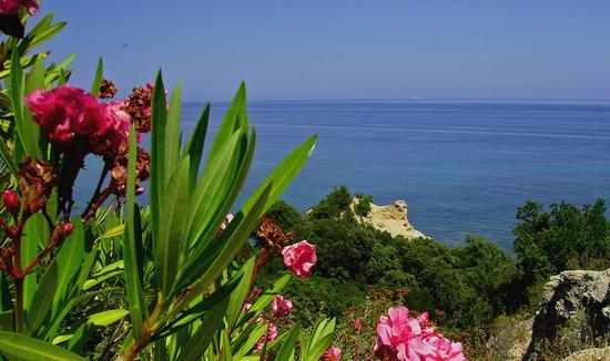 weekend a Calagonone - Cala gonone (2522 clic)
