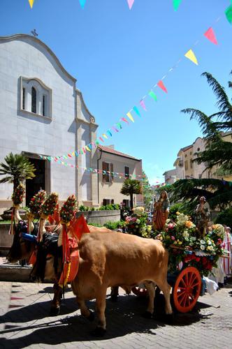 Festa di Santa Barbara e Sant'Isidoro - Perdasdefogu (3953 clic)