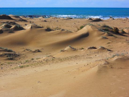 Dune africane sulla spiaggia - Marina di modica (4216 clic)