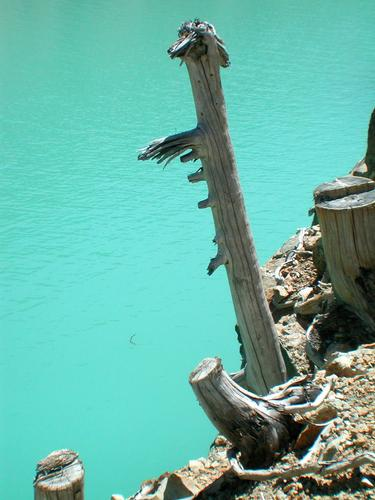 Lago di la Place Moulin particolare 2 - Bionaz (2569 clic)