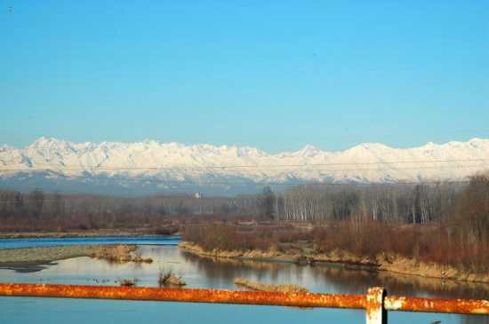 Saluggia: vista della Dora Baltea e dell'arco alpino innevato (3443 clic)
