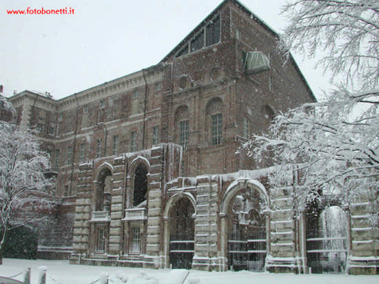 Nevica a Rivoli (2952 clic)