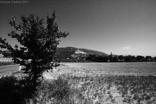 Road to Assisi (2087 clic)