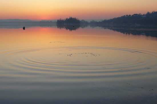 Cerchi nell'acqua - Pusiano (4379 clic)