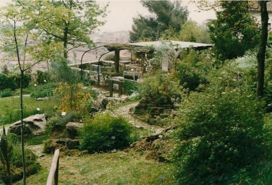 www.potatore.altervista.org - Bergamo (3127 clic)
