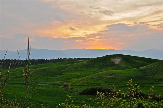 Tramonto sul Verde - Santa severina (3841 clic)