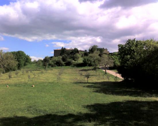 castello - Perugia (3066 clic)