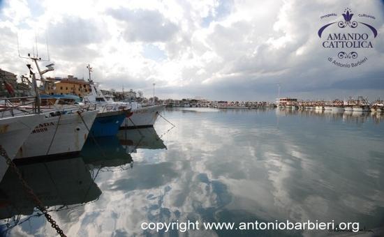 Cattolica porto, darsena pescherecci. (2095 clic)