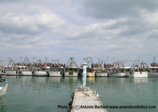 Porto di Cattolica, Darsena pescherecci.  (3485 clic)
