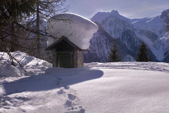 Una leggera nevicata a Staboletto - Daone (4124 clic)