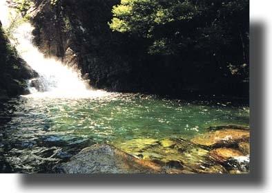 Cascata del Marmarico, laghetto - Bivongi (5494 clic)