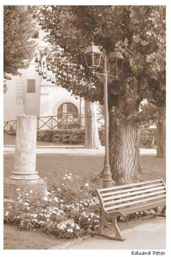Parco Villa Adele Anzio (2295 clic)