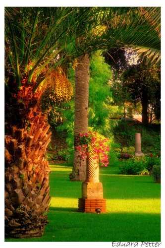 Parco Villa Adele - Anzio (2383 clic)