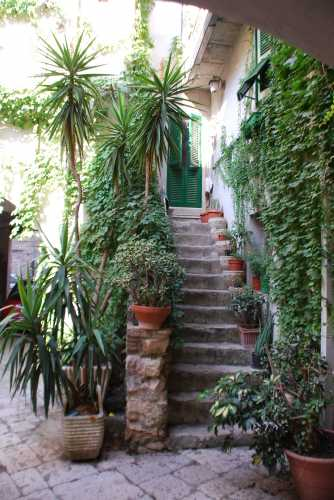 Cortile in Via C. Cavour - Fondi (2119 clic)