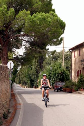 Arrivo a Bolgheri - Via dei cipressi in bicicletta (2771 clic)