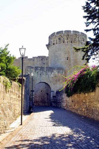 Verso il Castello - Tarquinia (2097 clic)