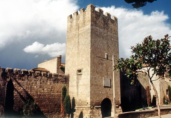 Citta di torri e mura - Tarquinia (2420 clic)
