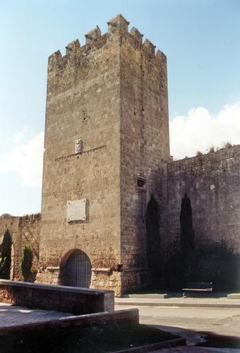 Citta di torri e mura - Tarquinia (2491 clic)