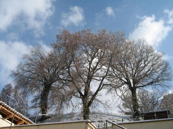 Le tre quercie - Foligno (2721 clic)