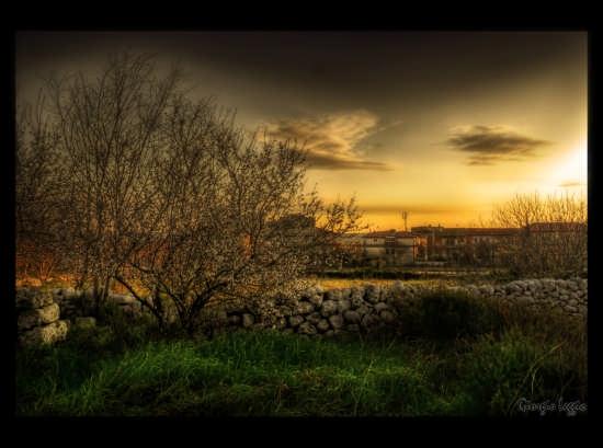 L'alba del Mandorlo - RAGUSA - inserita il 27-Apr-09