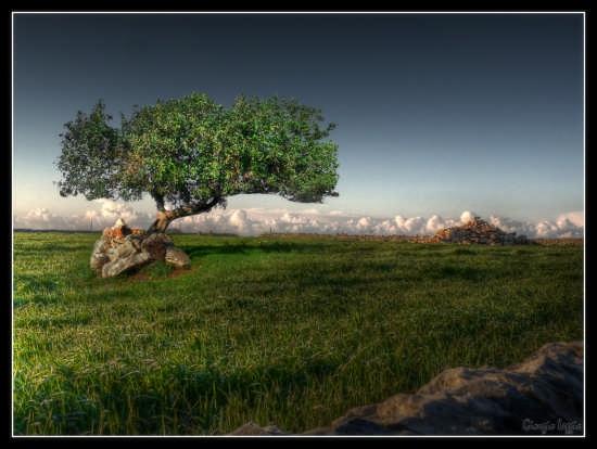 Ai Limiti del Mondo - RAGUSA - inserita il 17-Apr-09