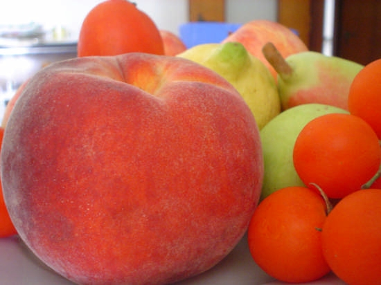 frutta di stagione  - Napoli (4398 clic)