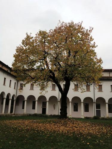 Autunno - Brescia (826 clic)