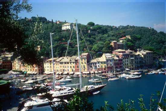 Colori della Liguria - Portofino (3458 clic)