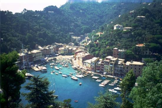 Porto Fino  il Porticciolo e la Piazzetta - Portofino (5494 clic)