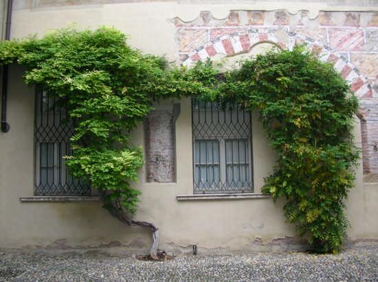 Bresia Giardini segreti - Brescia (2137 clic)