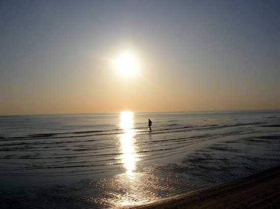 solitudine - Riccione (2246 clic)