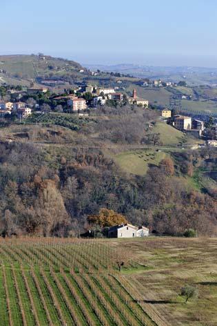 Castelplanio, veduta del borgo (1962 clic)