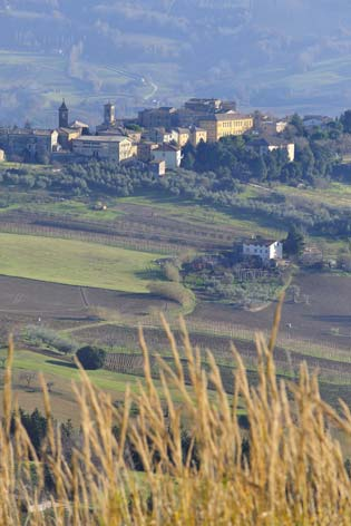Castelplanio, veduta del borgo (2154 clic)
