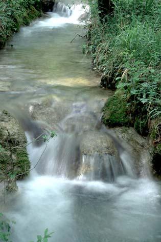 Fabriano, sorgenti del fiume Giano (4207 clic)