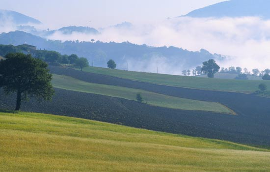 Sassoferrato, paesaggio primaverile.  (6138 clic)