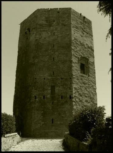 Torre Ottagonale di Federico II di Svevia - Enna (5114 clic)