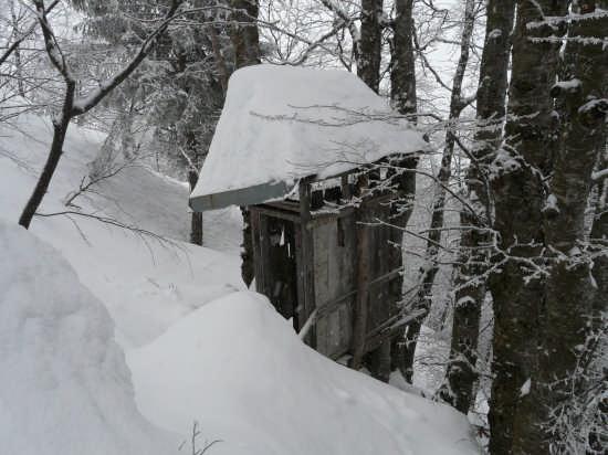 toilette ....Caset gennaio 2009 - Tremalzo (2132 clic)