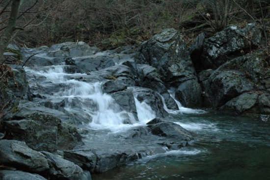 Rio Sbruggia - Sassello (3352 clic)