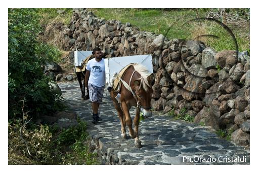 alicudi-isole eolie (1256 clic)