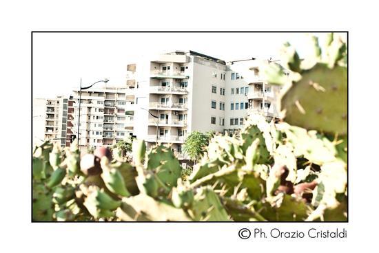 - Catania (1131 clic)
