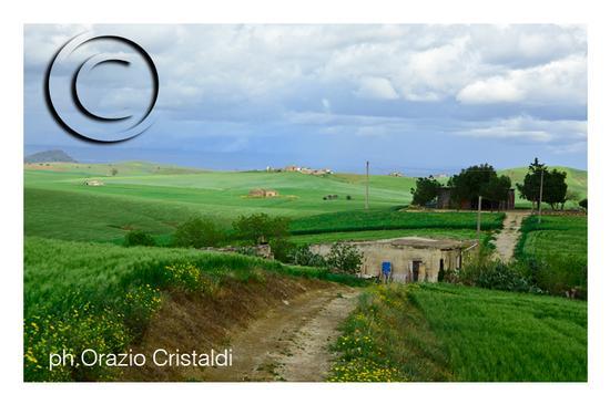 - Castel di judica (891 clic)