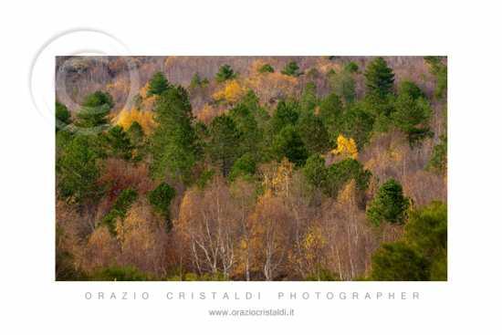 colori - Etna (2661 clic)