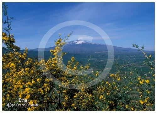 etna (2536 clic)