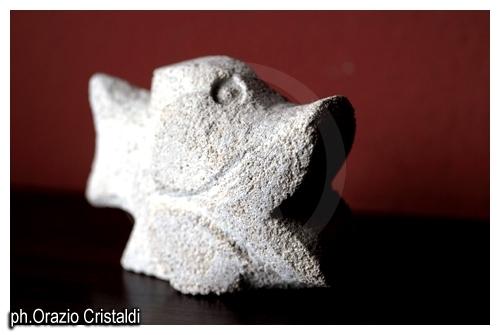 pesce fresco - Favignana (3984 clic)